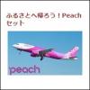 [ふるさと納税]実質2000円でピーチポイントGET!泉佐野市のお礼は還元率50%のLCC航空券!